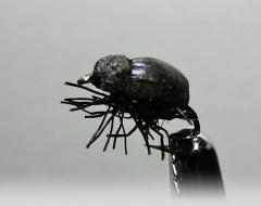 Käfer-2