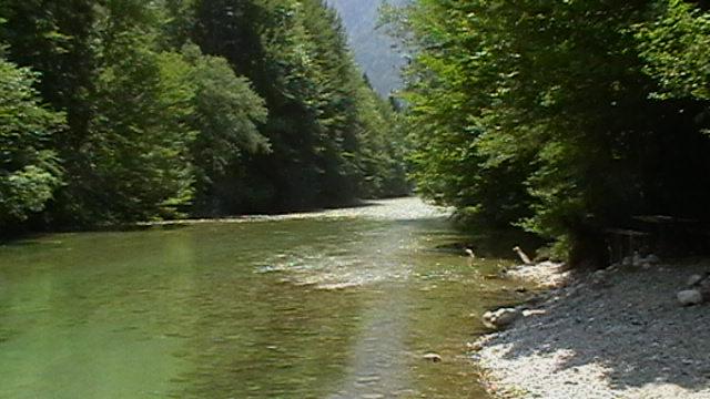 Zum Fliegenfischen an die Sava Bohinjka in Slowenien.