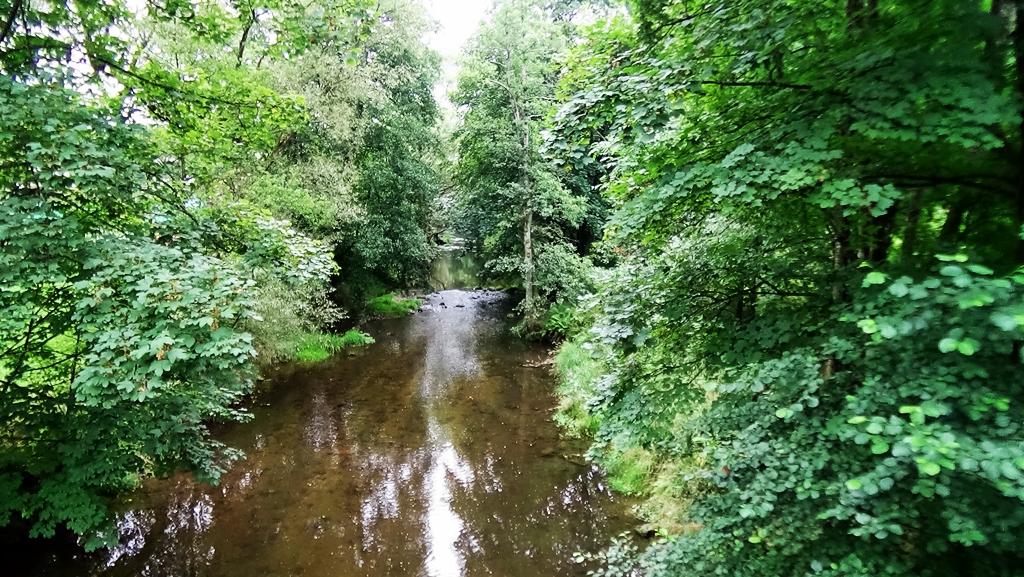 weißer Regen, Brücke am Roten Steg