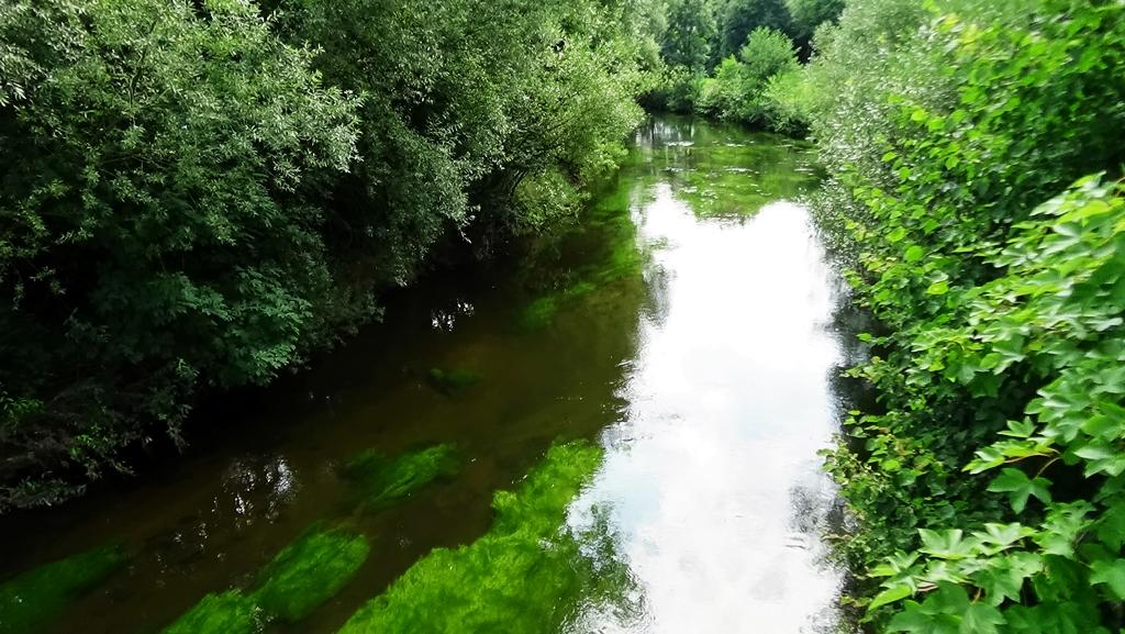 weißer Regen, Brücke Lindner Bräu