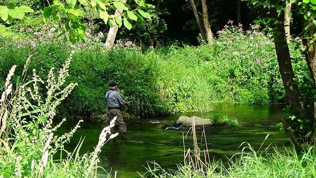 Fliegenfischen im weißen Regen. Konrad im weißen Regen am Kurpark in Bad Kötzting. Bayerischer Wald, Anfang August 2014.